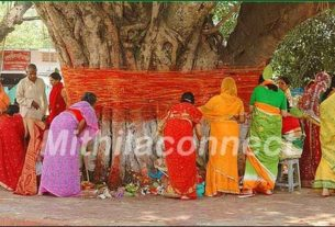 Women in mithila worshipping banyan tree for their husband's long life