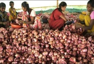 Onion prices at Darbhanga is touching new heights
