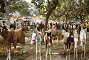 Sonepur cattle fair begins in Bihar
