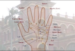KSDSU to start courses on Vastu Shastra and Palmistry
